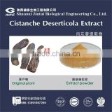 herbal extract type ration extract 10:1 cistanche tubulosa extract