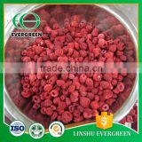 Made In China Freeze Drying Raspberry Wholesale