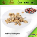 Famous Chinese Medicine Astragalus Extract,Astragalus Extract Capsule,Astragalus Membranaceus