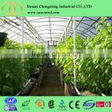 high qulity garden greenhouses for vegetables use/inflatable projection dome tent with manufacture price