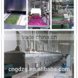 Wood drying machinery,High frequency vacuum Timber dryer