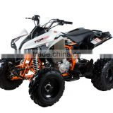 Inquiry about Kayo quad bikes for sale Tor 250 with Powerful 5 Gears
