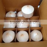 VIET NAM FRESH COCONUT YOUNG