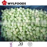 Frozen IQF melon balls green/yellow