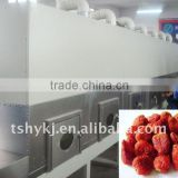 Industrial tunnel roater machine-Microwave seeds/nut roasting equipment