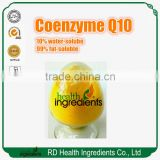 Hot sale pure coenzyme q10 bulk coenzyme q10 in cosmetics
