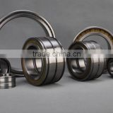 SL045008PP Double-Row Full Complement Cylindrical Roller Bearing SL045008 PP ,SL04 5008 PPNR