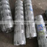 livestock panels /metal animal farm fence panel/hog wire fence panels of best price