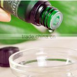 Tea Tree Oil - 100% Pure Australian