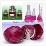 Natural Food Color Red Cabbage Color