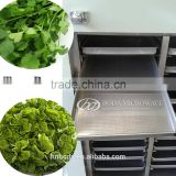 commercial fruit dehydrator / small commercial fruit drying machine