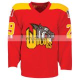 Team Ice Hockey Jersey