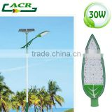 Solar led street light sun energy 12 hours working time 30w                                                                         Quality Choice