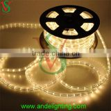 CE RoHS GS Approved wholesale 2 wire 10mm warm white outdoor Christmas decoration led rope light