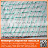 wholesale nylon fruit anti bird protective net , hdpe uv wire mesh bird capture net , pe plastic fence bird protection net