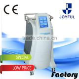 Fat Loss Cryolipolysis Machine 220 / 110V Price Cryotherapy Machine For Sale Fat Reduction