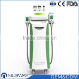 1800W 5 treatment handles available criolipolisis / fat freezing cryotherapy / cellulite removal machine / cryolipolyse