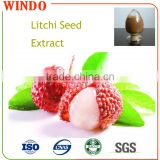 Wholesale Chinese Factory Supplied Peculiar Fruit Litchi/Organic Seed Extract Powder with Bulk Price