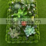 Wall decoration new products artificial moss frame fake decoration frame with competitive price