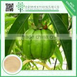 High Quality Factory Price herbal extract/60% hydroxycitric acid garcinia cambogia extract