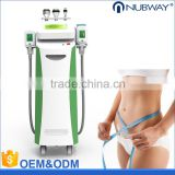 Skin Lifting Professional Freeze Cryolipolysis Anti Fat Freezing Cellulite Cryolipolysis Slimming Machine Lose Weight