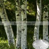 Natural white birch bark extract of Betulinic Acid,CAS:473-98-3