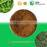 Green tea extract powder natural caffeine ,green tea liquid extract,matcha tea powder