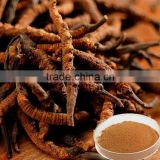 Trade assurance Hotselling Top quality Pure natura health care product cordyceps extract Cordyceps Sinensis Polysaccharide