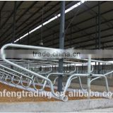 Hot-Dip Galvanized Steel Pipe poultry farming equipment, Cattle Lying Bar, farm equipment for sale