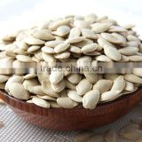 benefits of pumpkin seeds Wholesale snow white / shine skin pumpkin seeds competitive price