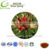 Food grade ethanol extracted rhodiola rosea p.e.powder