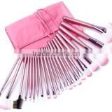 22pcs pro hot pink plastic handle make up set/makeup brush set goat hair/private label free sample/cosmetic pouch china supplier