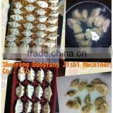Chinese Traditional Snack Dumpling Making Machine, Dumpling Maker suitable for Chinese Restaurant