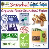 Organic Fresh Branched Dates, Deglet Nour Dates, Organic Dates, Fresh Organic Dates on The Branch1 Kg Carton