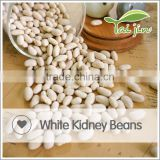 China Origin White Beans On Sale