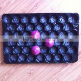 China Global Wholesale 39*59cm Polypropylene Blue Color Soft Tomato Packing Perforated Plastic Trays in Transportation