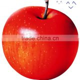 Guangzhou Sailing Dream Import And Export Co., Ltd.