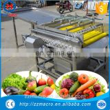 automatic vegetable cabbage and fruit washing and drying machine