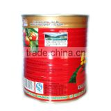Canned Tomato Paste, Drum Tomato Paste, Fresh Tomato Sauce, Tomato Puree, Tomato Ketchup