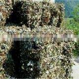 2016 crop pure Mint leaves for herb tea, all kinds of dried herbs in bulk