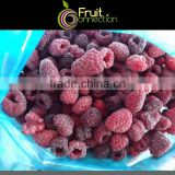 Raspberries Grade A IQF Willamette