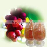 Factory Bulk-supply100% Natural Freeze-Dried Grape Juice Fruit Powder Vitis vinifera forFood and Beverage