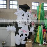 new style popular cute inflatable cow costume for advertising
