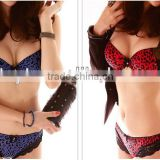 2013-2014 Sweet Dress sexy women lingerie bra panty for teen girls