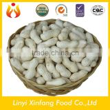 wholesale peanuts raw peanuts in shell bulk peanuts for sale
