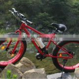 Fat Electric bike - Hot sale 26 inch * 4.0 tyre snow electric bike mountain , new experience
