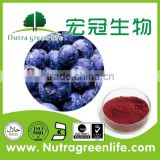 Daily Flavor,Food Flavor,Tobacco Flavo Usage and Plant Extract Natural Variety blueberry flavor