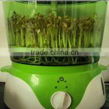 Bean sprout making machine for family