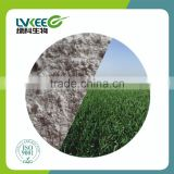 Lvkee supply high content 200 bilion cfu/g Bacillus amyloliquefaciens for agriculture product