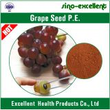 100% natural Grape Seed/Skin Extract powder